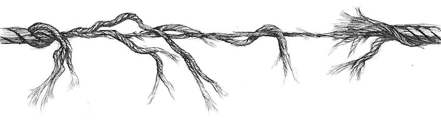 Rope5_Crop
